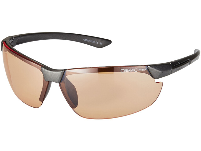 Alpina Draff Cykelbriller sort (2019) | Glasses